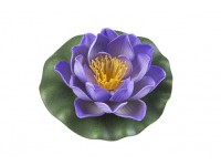 Lotus Foam Purple 10 cm