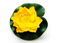 Lotus Foam Yellow 10 cm