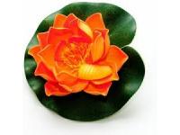 Lotus Foam Orange 20 cm
