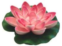 Lotus Foam Pink 10 cm