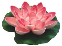Lotus Foam Pink 17 cm
